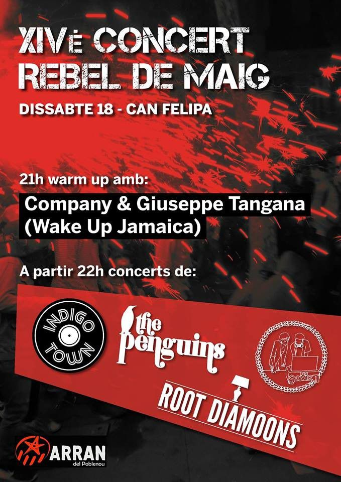 Concert de The Penguins, Root Diamoons, Indigo Town, Company...  - XIVè Concert Rebel de Maig